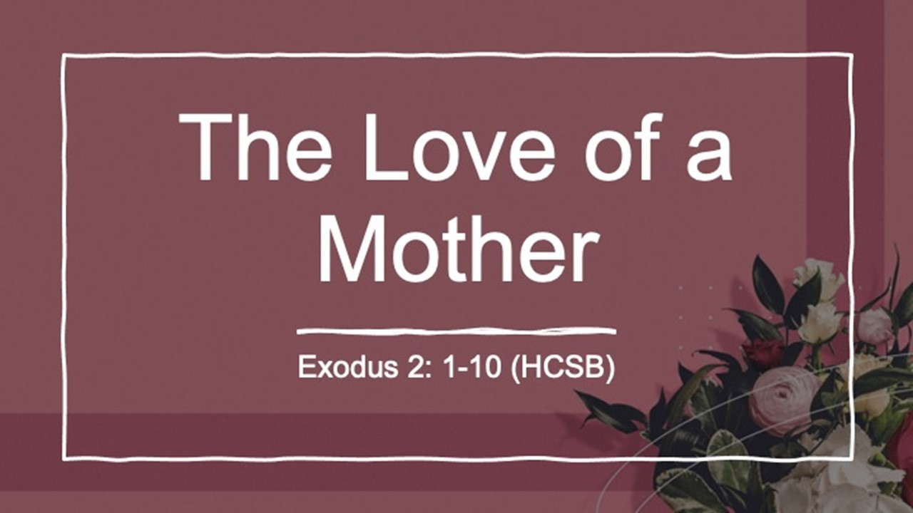 The Love Of A Mother Rev. Dr. Willie E. Robinson
