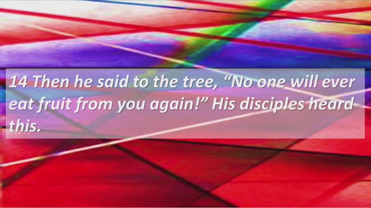 New Piney Grove Missionary Baptist Church  on 11-Jul-21-13:51:37